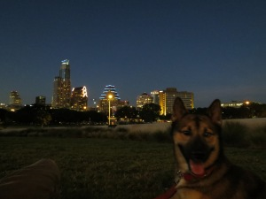 Maverick and downtown Austin